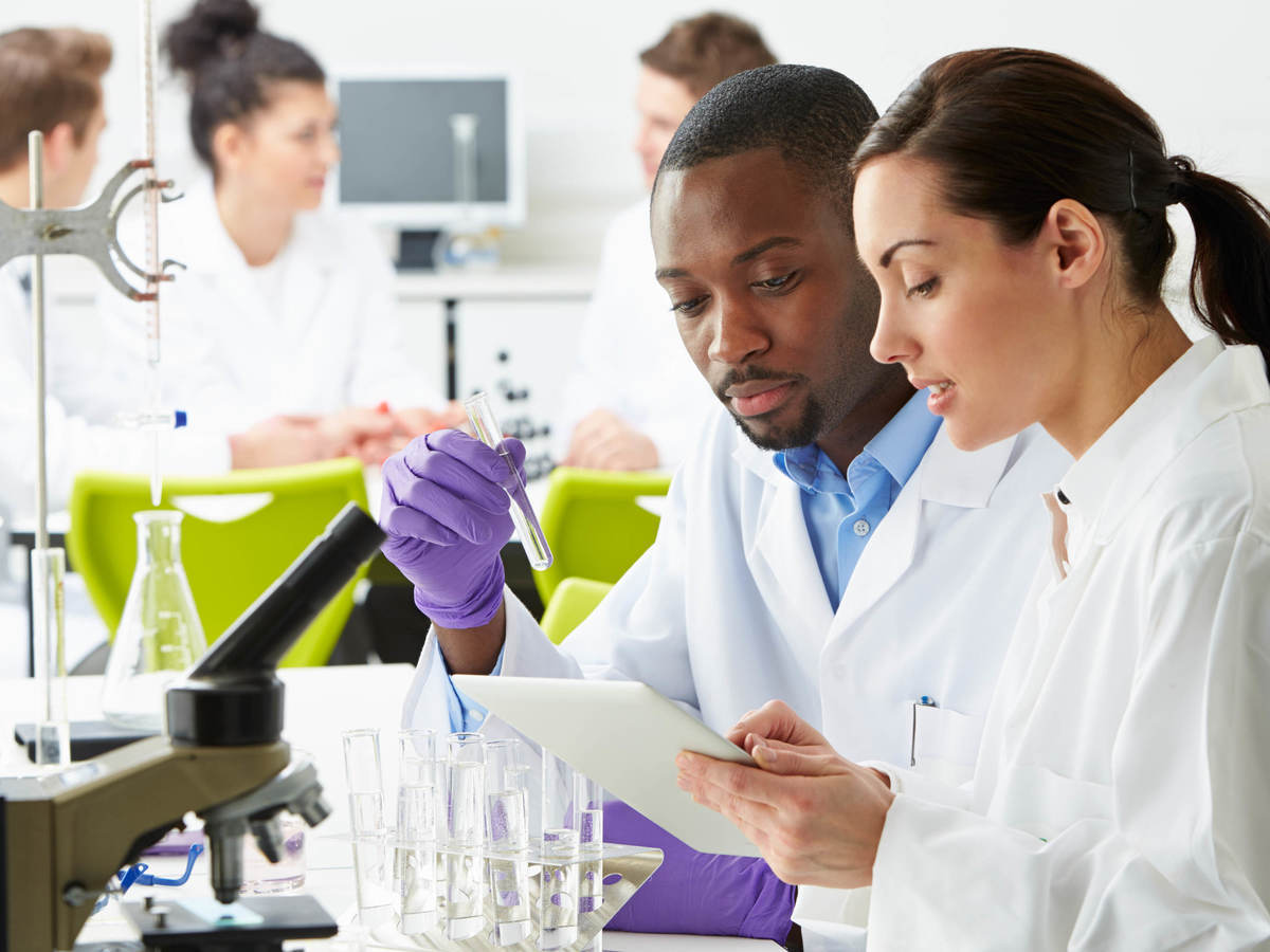 Scientists in lab working